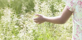 Rear view of a teenager girl standing in a field of tall grass