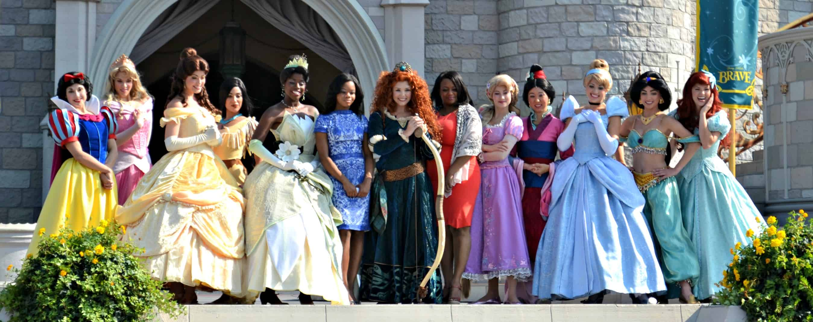But there is a list of requirements that each Disney princess has to get through to become an official princess. Because of this list, there have been some ...