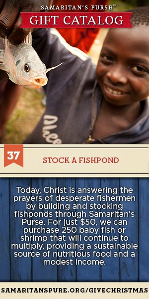 37-Fishpond-Pinterest-Images