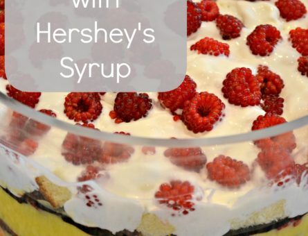 Hershey's Syrup 2