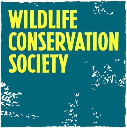 WCS Logo (1)